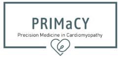 Primacy Calculator Logo
